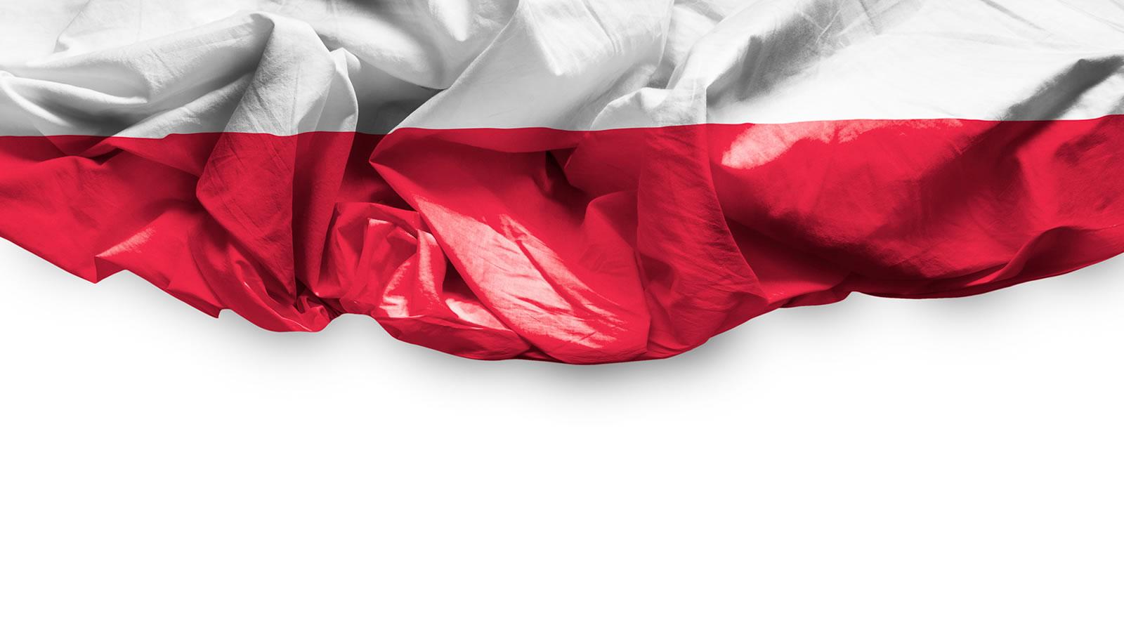 ZING TO Polska firma – działalność opieramy w 100% na polskim kapitale